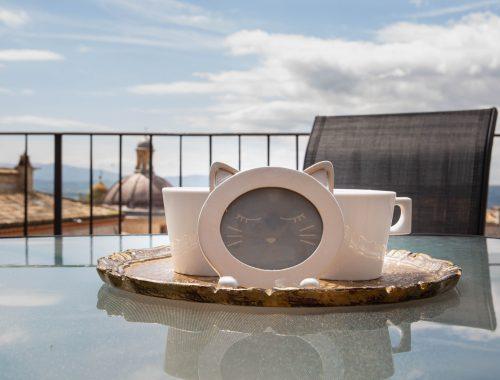 Appartamenti nel cuore di Assisi, sulla Piazza del Comune, terrazza e vista meravigliosa